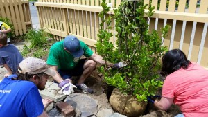 We raised money with a work-a-thon, volunteering 1 hour with Lowell Parks and Conservation Trust for every $100 donated.
